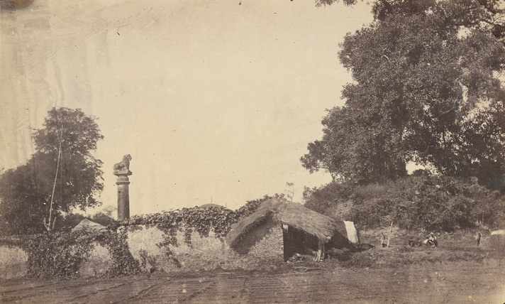 Ruined brick stupa at Basarh, with lion pillar on the left.